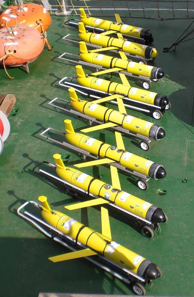 Slocum underwater gliders of the CMRE